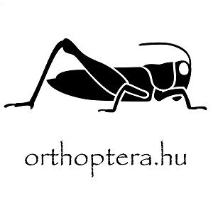 orthoptera.hu logo